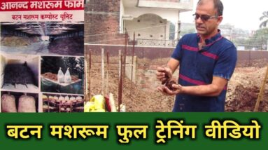 Full training video of Button mushroom farming LiVE | #Mushroom ki kheti ki jankari | AGRIL CAREER
